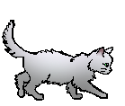 File:Whitewing (Apprentice).png