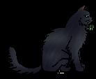 File:Cinderpelt (Medicine Cat).png