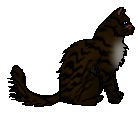 File:Hawkfrost.warrior.png
