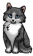 Подпалинка (котенок)