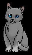 Улитка (котёнок)