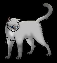 Хмуролика (звёздный предок)