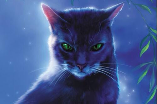 Коты-воители вики