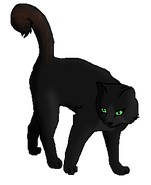 Лисица (воительница)