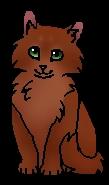 Острозвёзд (котёнок)