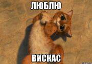 Kot-v-sapogah 28671311 orig