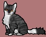 Стрекозка Звёздный котёнок