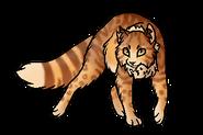 Львиносвет (бродяга)