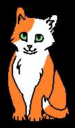 Рина (котёнок)
