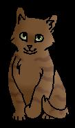 Косолап (котёнок)