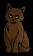 Улиточник (котёнок)