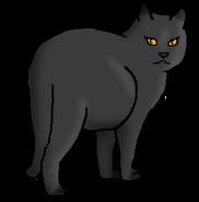 Фиалковая Заря (королева)