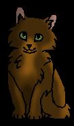 Лапа (котенок)