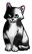 Шпилёк (котенок)