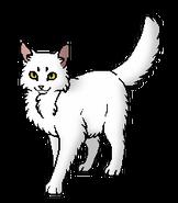 Белыш (оруженосец).