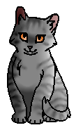 Колосишка (котёнок)