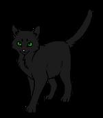 Чернокрылка (оруженосец)