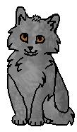 Плавник(котёнок)