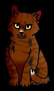 Росистый Носик (котёнок)