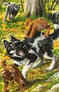 Львинолап спасает Вересколапку от клыков собаки, Знак трех золото