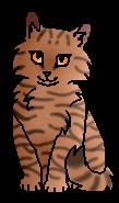 Буйнолапка котенок