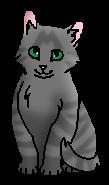 Свистушка (котёнок)