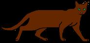 Маугли (одиночка)