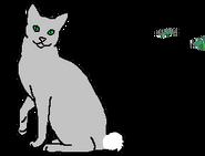 Кроличий Хвост (звёздный предок)