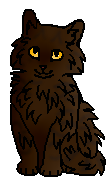 Клочишка (котёнок)