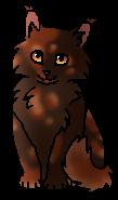 Ярохвост (котёнок)
