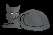 Затуманенная Вода (кошка древнего горного клана)