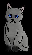 Паучонок ПT (котёнок)