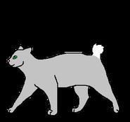 Кроличий Хвост (тоннельщик)