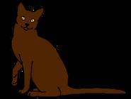 Жабник (зв.предок)