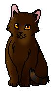 Змеевичок (котёнок)