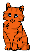 Крапива ГП (котёнок)