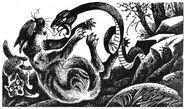 Медобока змея Колючка Восход солнца