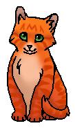 Блёсточка (котёнок)