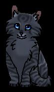 Ручеёк сестра (котёнок)