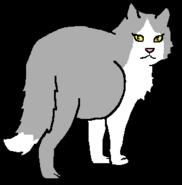 ЛепестянкаКоролева