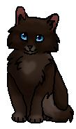Щавелька (котёнок)