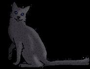 Щуколап (звёздный предок)