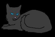 Колючий Град кот древнего горного клана