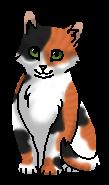 Неженка (котёнок)