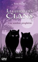 Битва за лес(книга)-Франция(н)