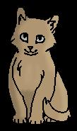 Щебенёк (котёнок)