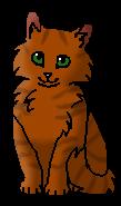 Рыжая (котёнок)