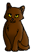 Шипастик котенок