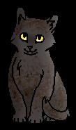 Ястребок (котёнок)
