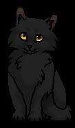 Бузинничек (котёнок)